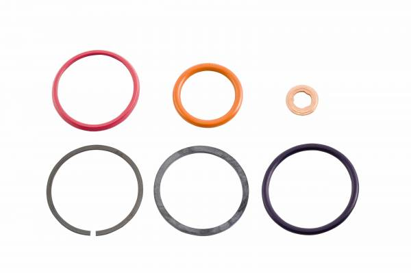 Alliant Power - Alliant Power AP0001 HEUI Injector Seal Kit